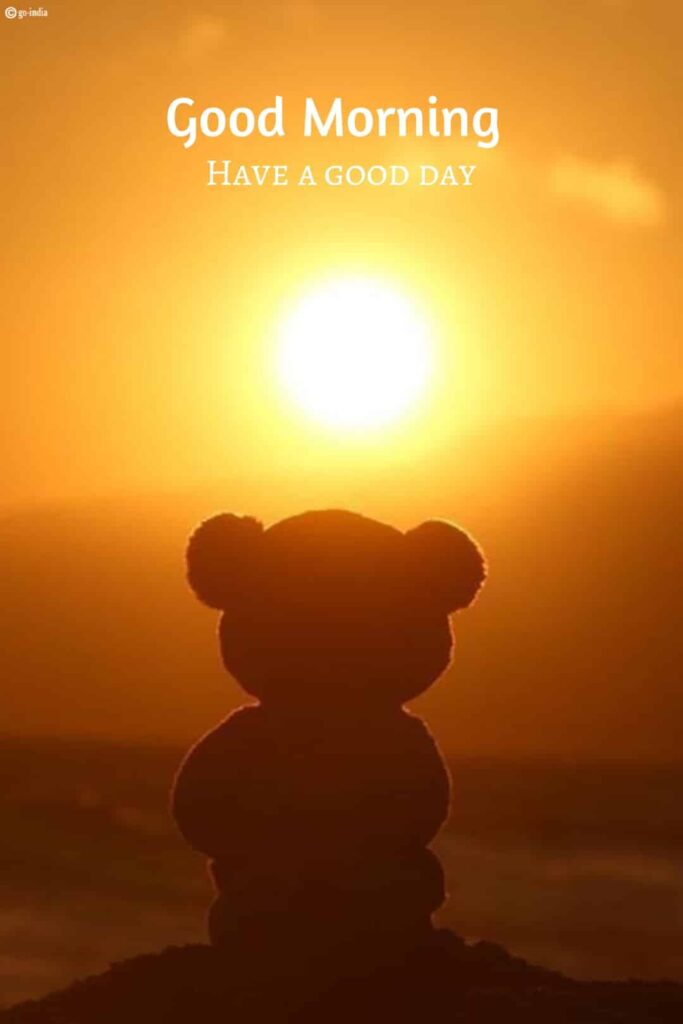 Adorable good morning pictures with teddy bear