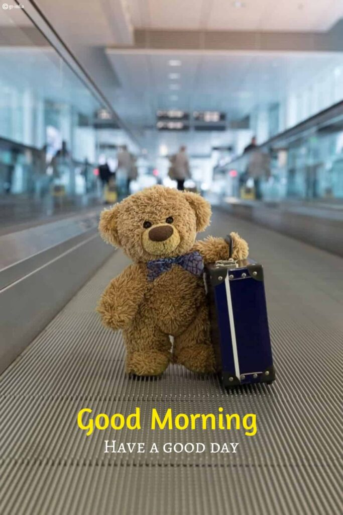 Awesome good morning pic with teddy