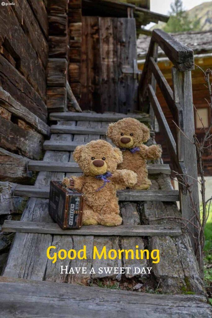 Best teddy bear images HD