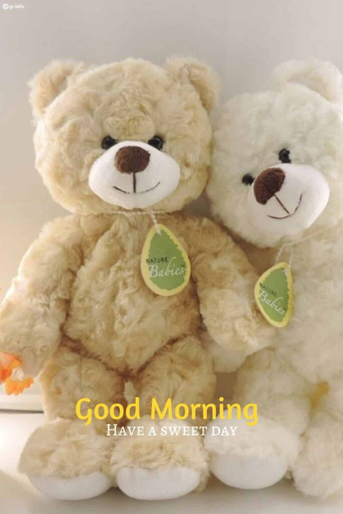 Couple teddy bear images with good morning