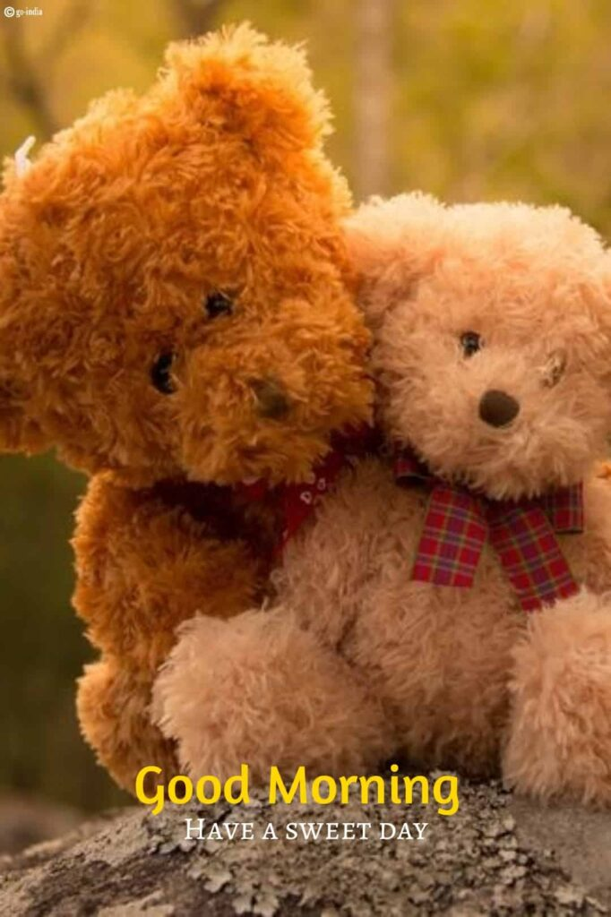 Cute good morning Couple teddy bear images