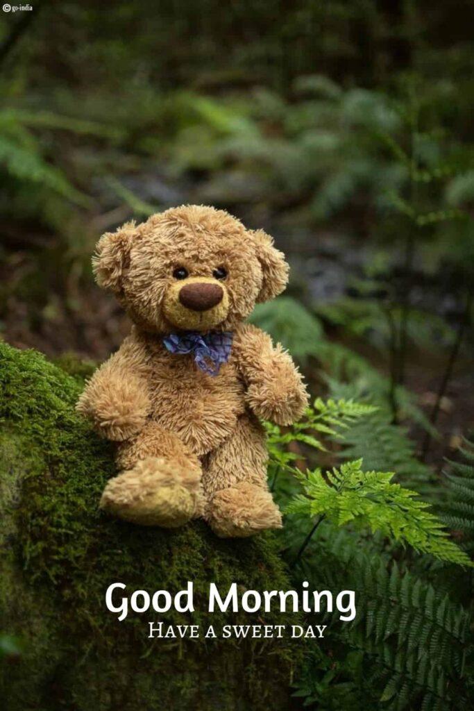 Cute good morning teddy bear image