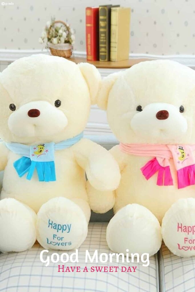 Good Morning Couple Teddy Bear
