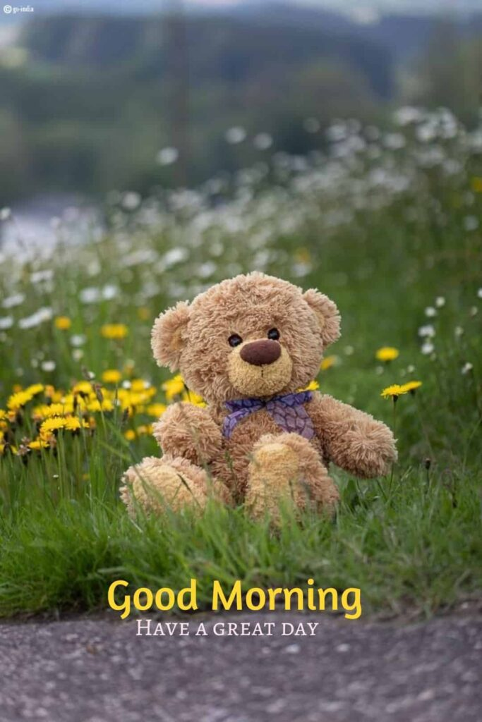 Good morning images for a teddy bear