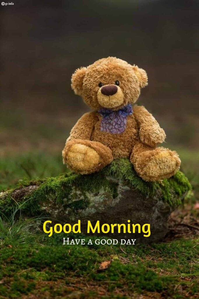 Good morning images hd with teddy bear