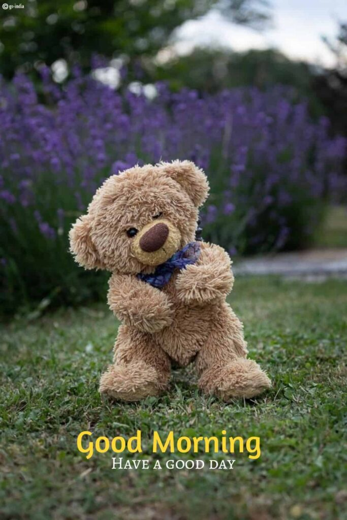 Good morning images in a teddy bear