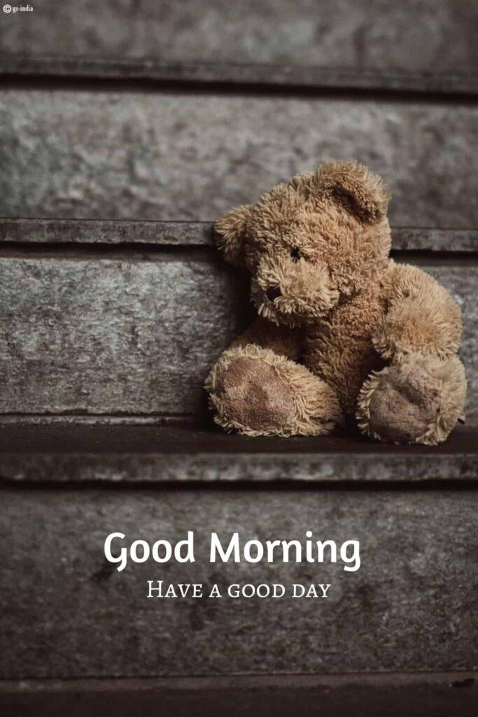 Good morning teddy bear hd images