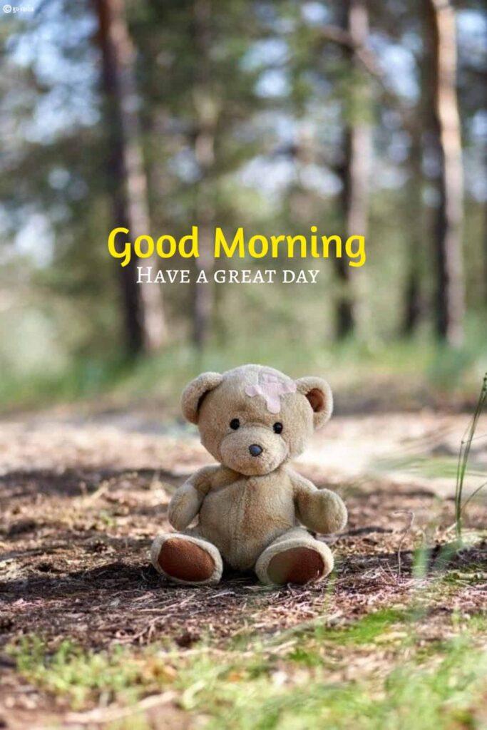 Good morning teddy bear images hd