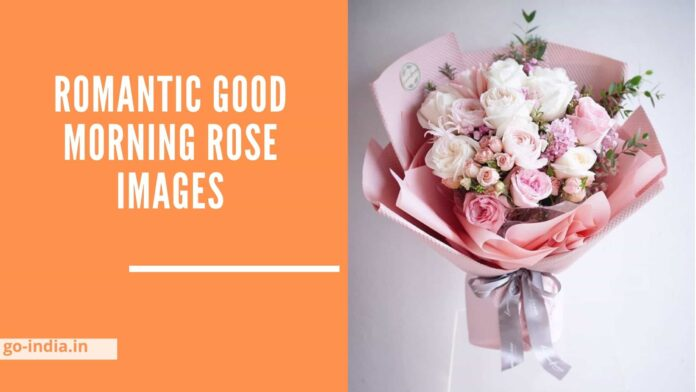 Romantic Good Morning Rose Images