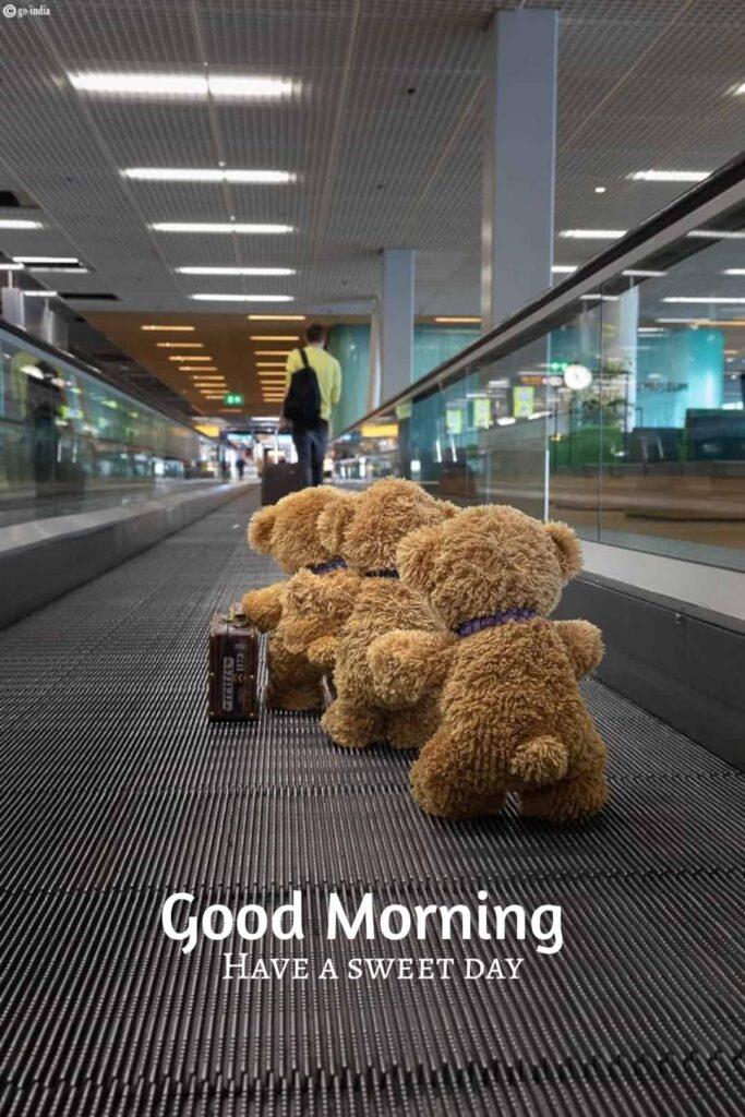 beautiful good morning image with teddy bears