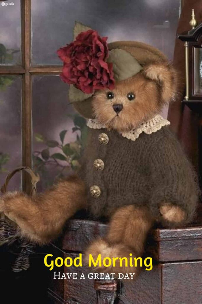 cute teddy bear image good morning