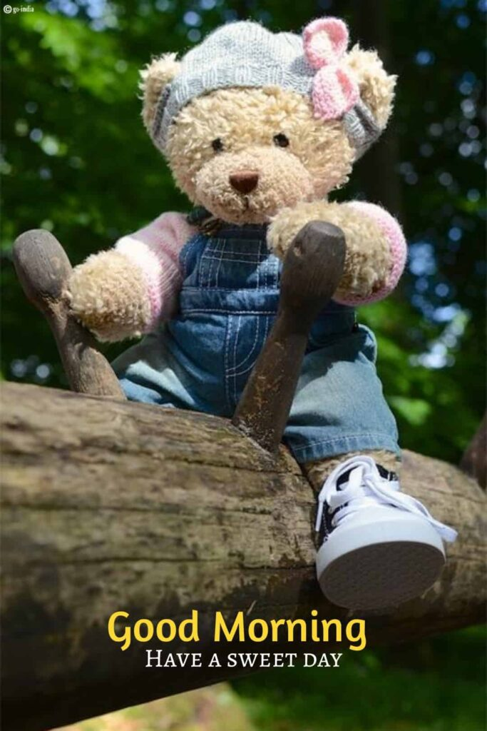 good moning img with teddy bear