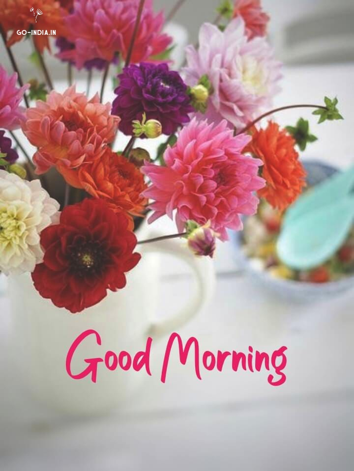 good morning flowers wallpapers download