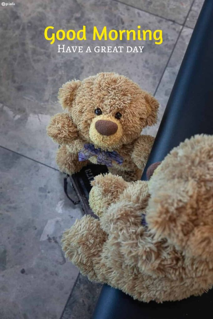 good morning have a great day image with teddy bear