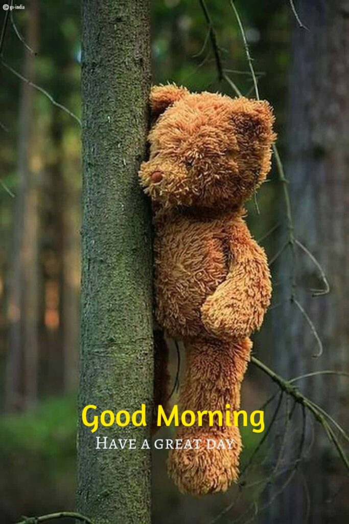 good morning have a greate day teddy bear images