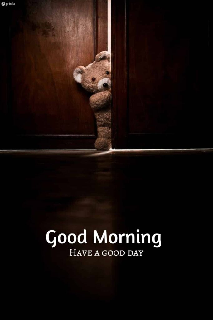 good morning have a nice day image with teddy bear