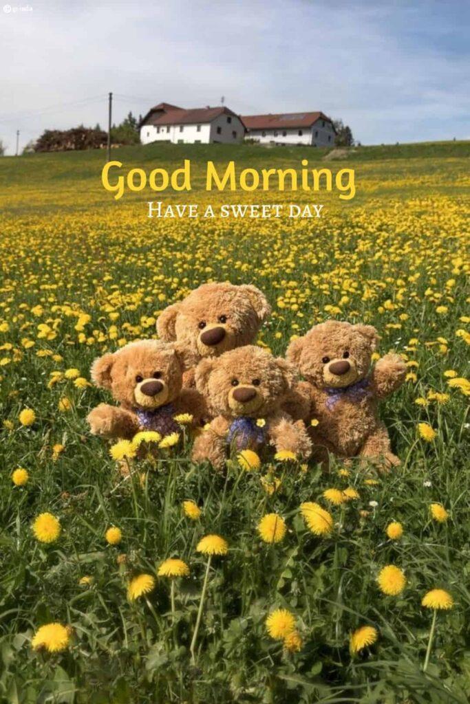 good morning image with four teddy bear