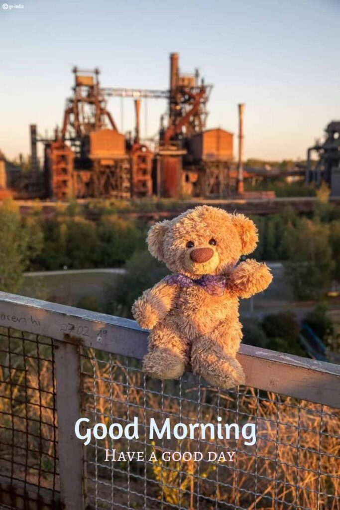 good morning images with teddy