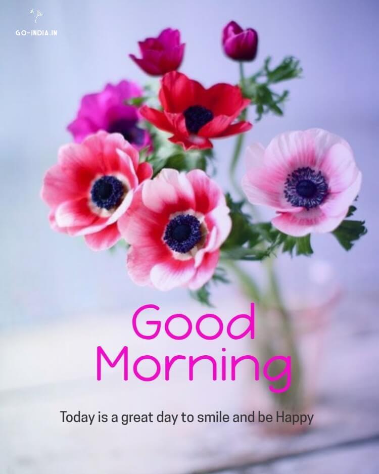 good morning lovely flowers wallpapers