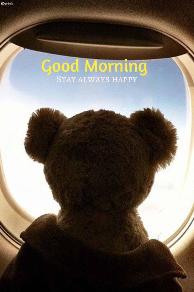 good morning teddy bear hd wallpaper