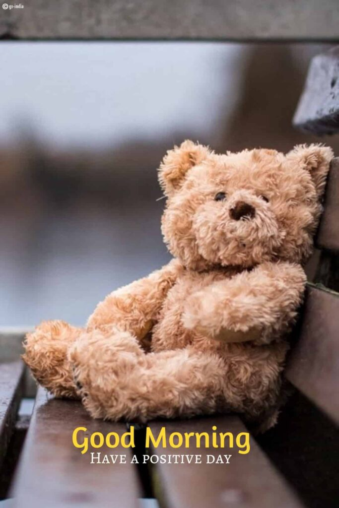 good morning teddy bear images free download