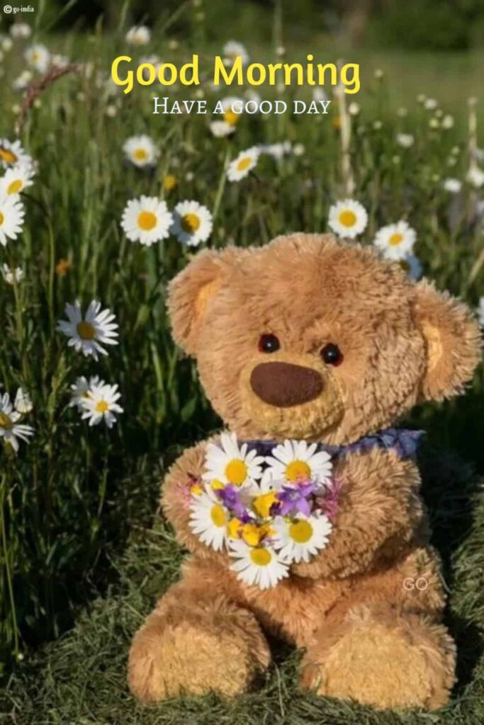 good morning teddy bear images with flowers