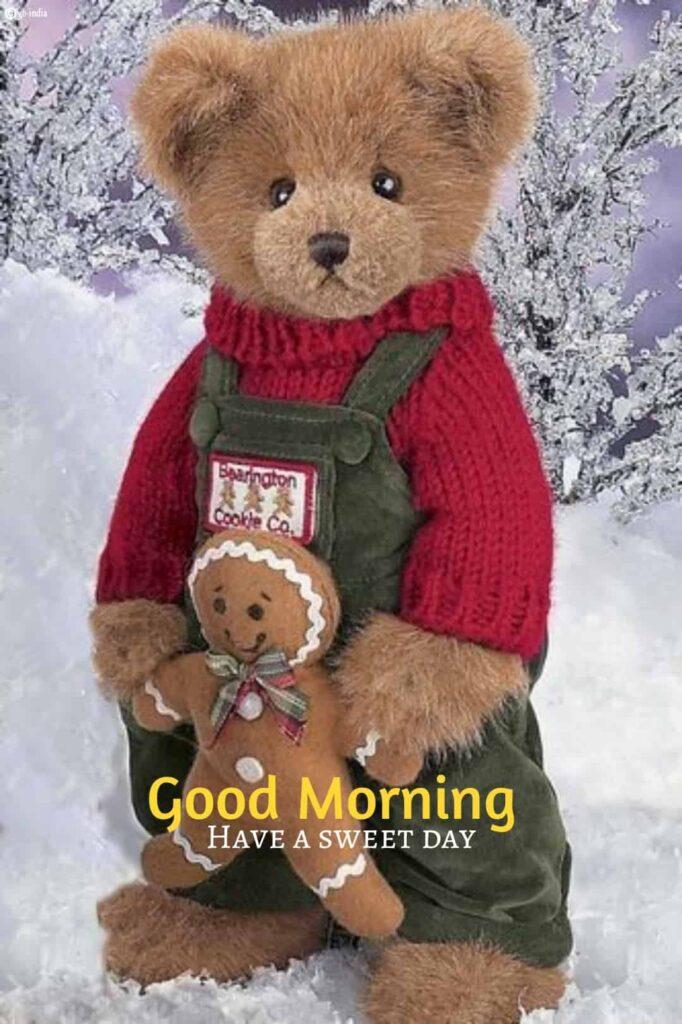 good morning teddy bear in snow image