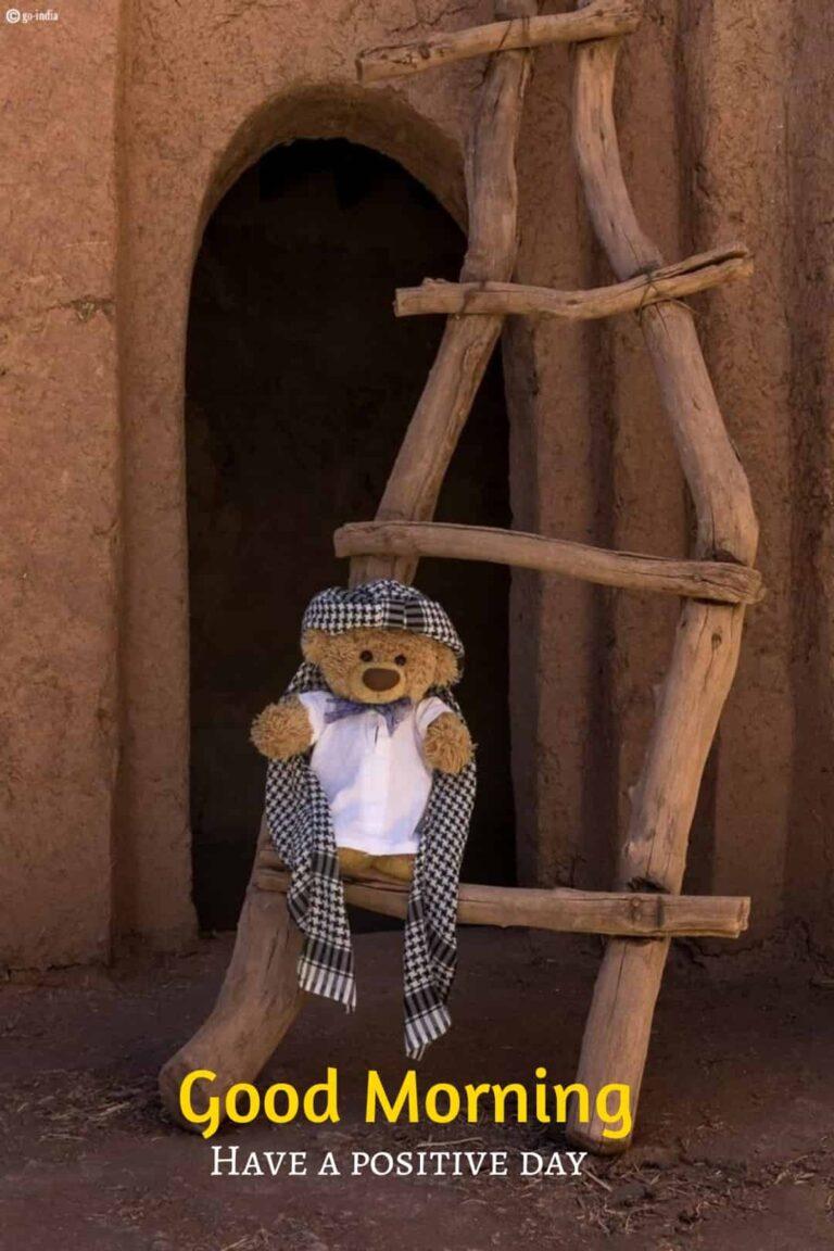 good morning teddy bear pic