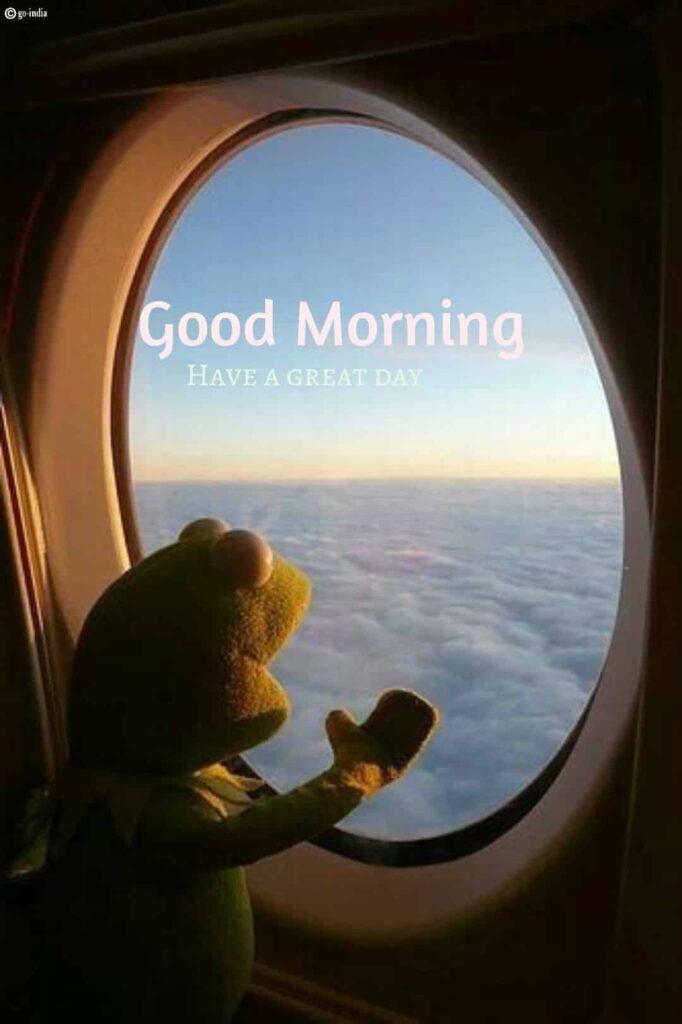 good morning teddy bear quotes