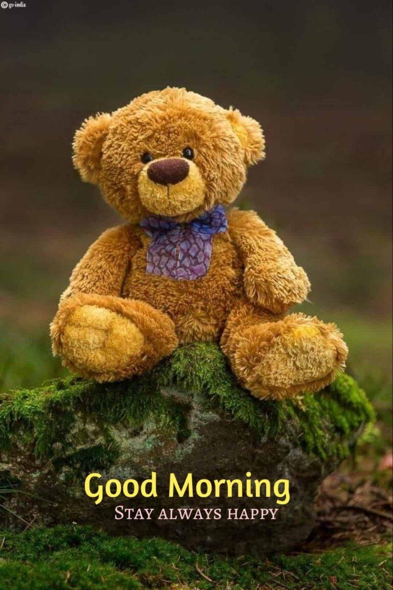 good morning teddy bear wallpaper