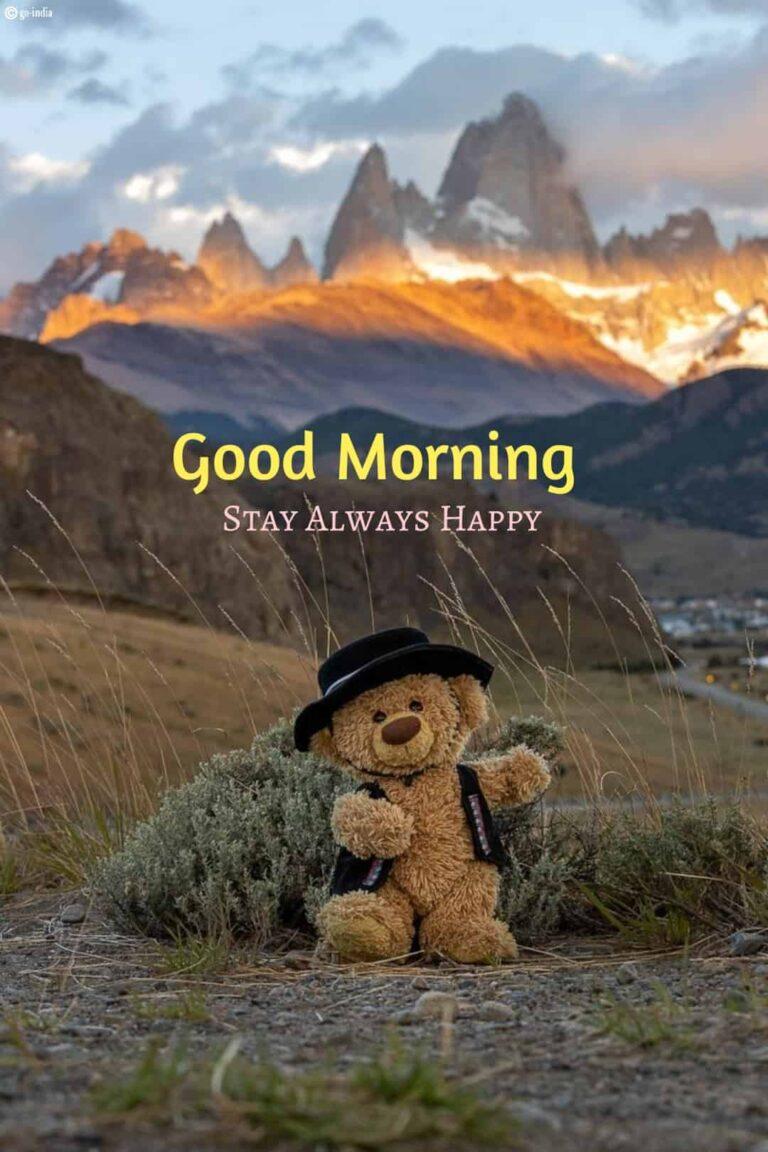 good morning teddy bear wallpaper download