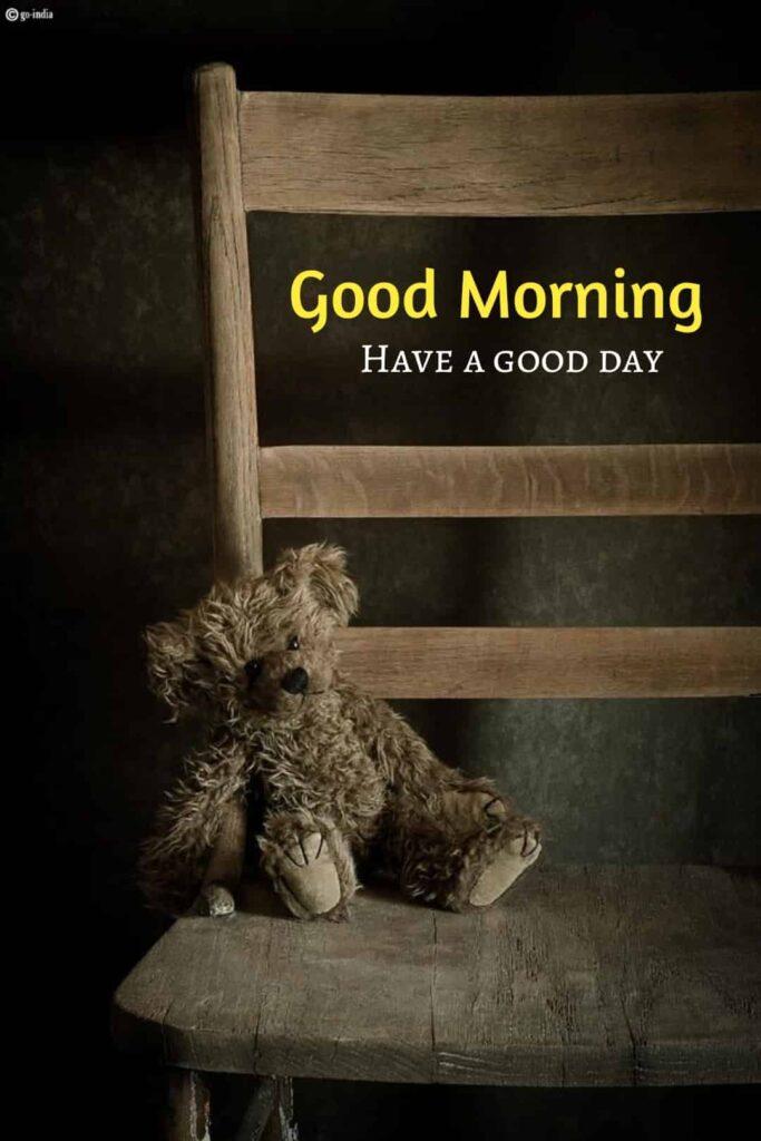 sab teddy bear image with good morning