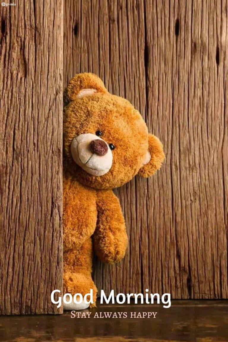 teddy bear good morning