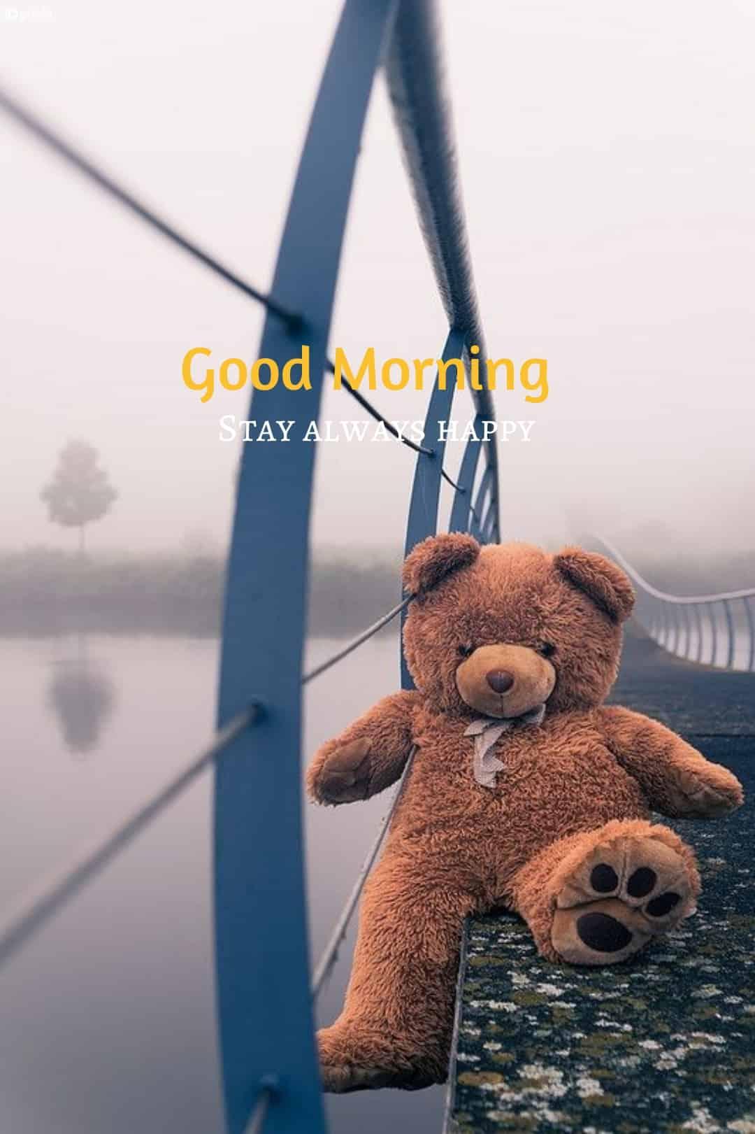teddy bear good morning photo