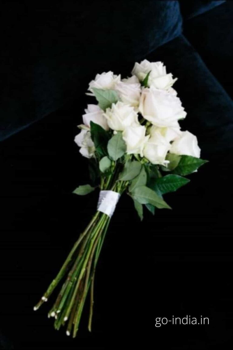 a bunch of preety white rose