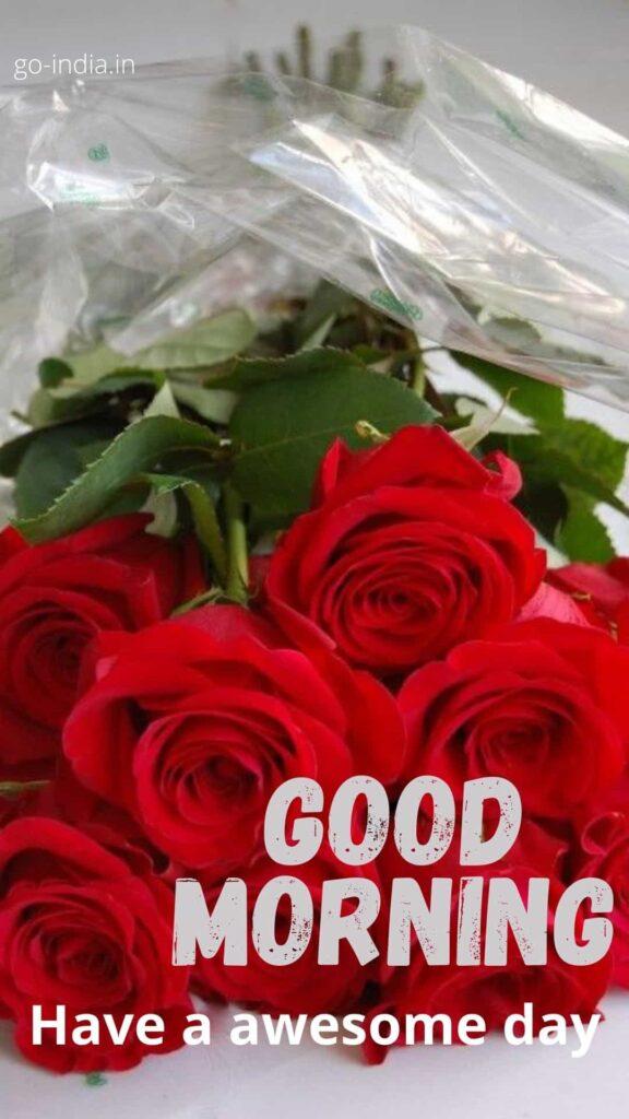 good morning rose HD download