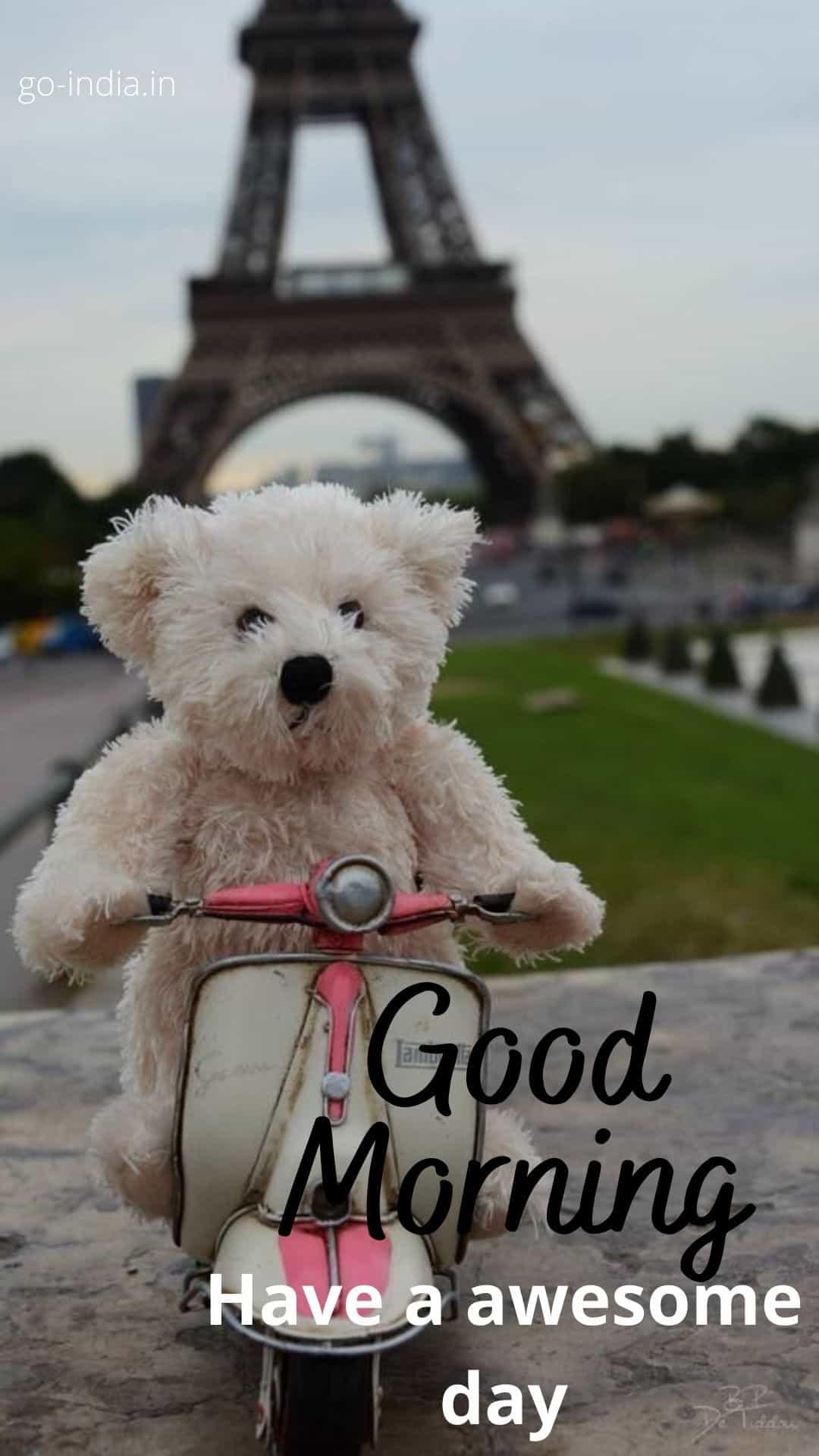 good morning teddy bear photos