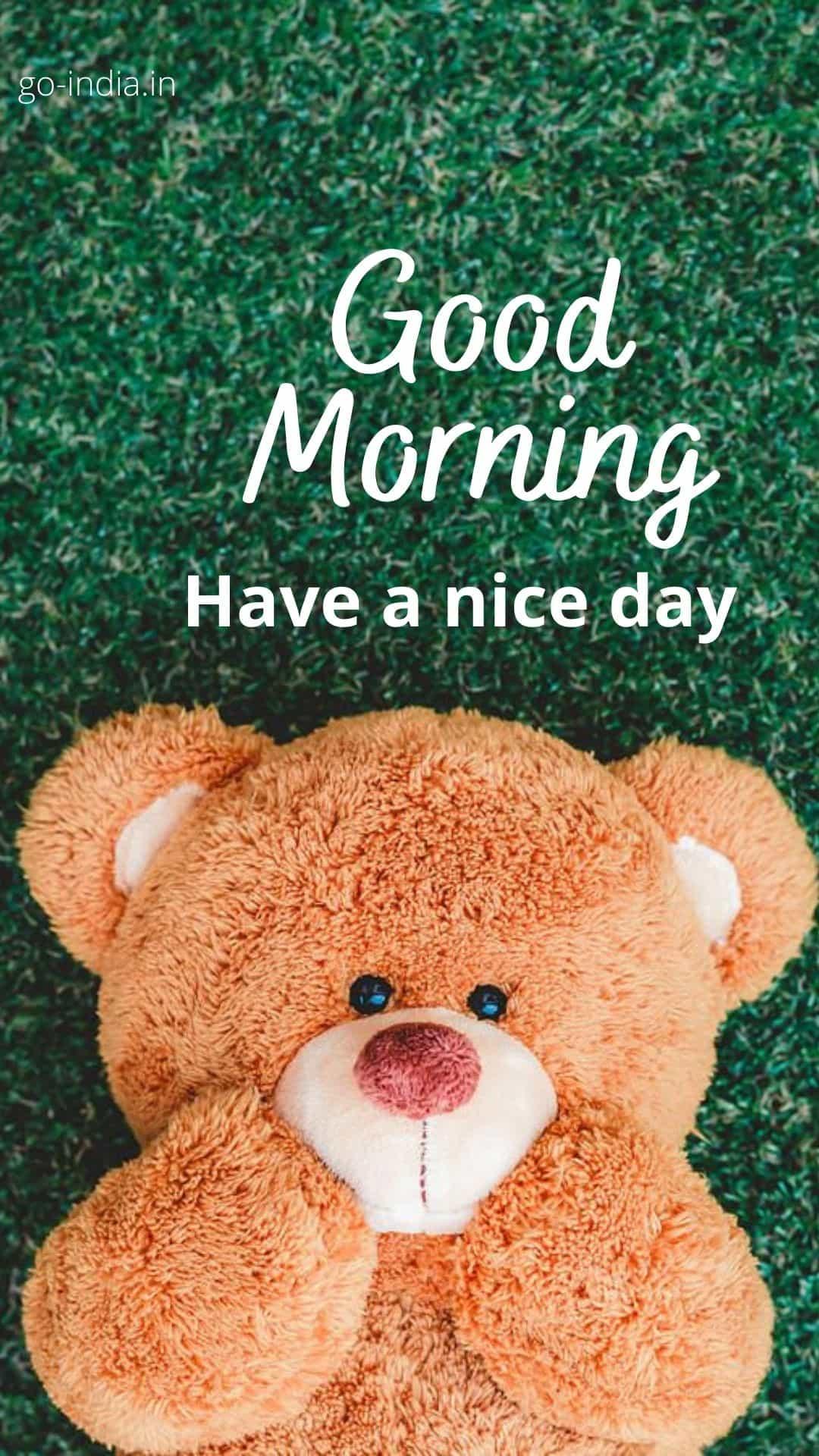 good morning teddy download