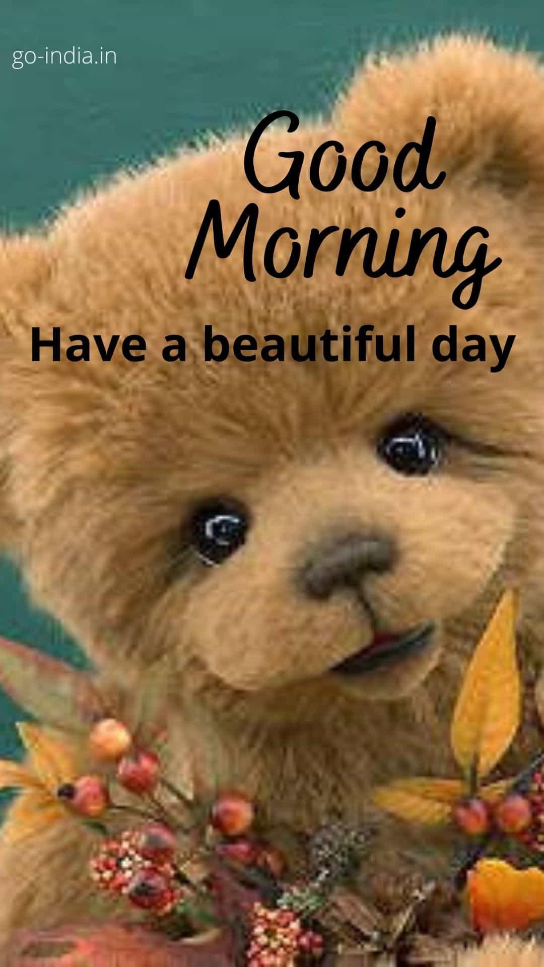 good morning teddy for whatsapp