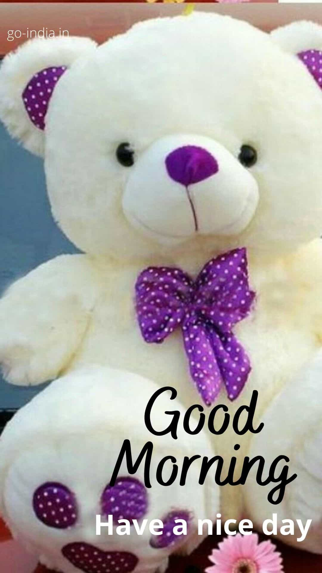 good morning teddy images